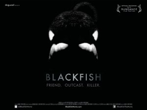 An orca, on a jet-black background, in a head-on shot, adorns the movie poster.