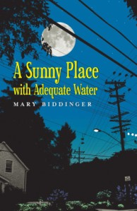 The full moon shines over a typical suburban house on the cover of the book.